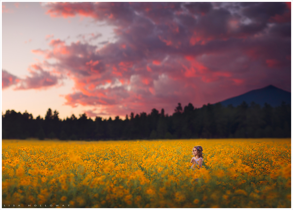 Little girl stands in a field of yellow wildflowers under a pink and purple sunset. LJHolloway Photography is a Las Vegas Child Photographer.