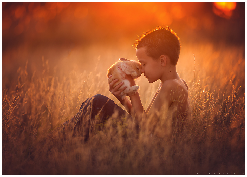 Little boy holds a baby bunny in a golden field. LJHolloway photography is a Las Vegas Child Photographer.