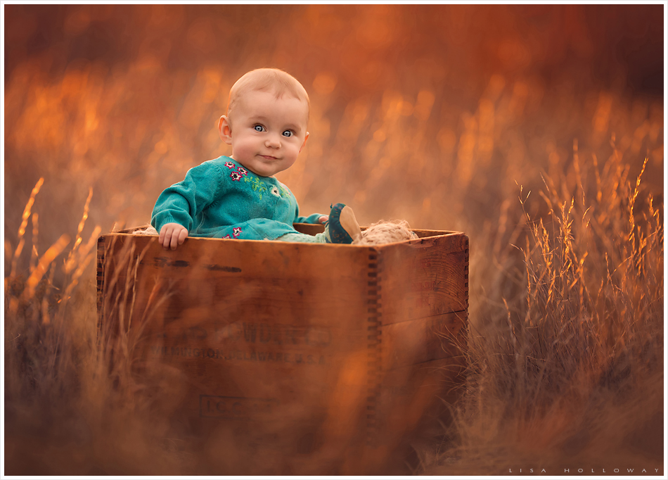 Baby girl has her portrait taken in a golden field. LJHolloway photography is a Las Vegas Child Photographer.